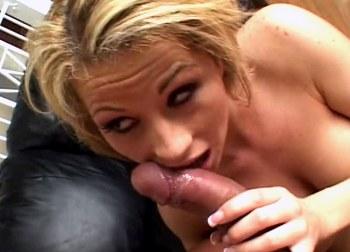 Pornostjerner giver blowjobs